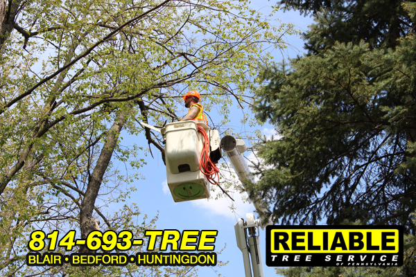 aerial_services
