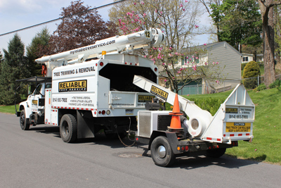 reliable_tree_Service_duncansville