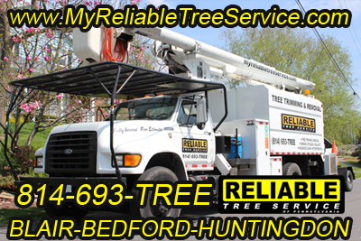 Reliable tree service truck taking workers to a job site for tree services.
